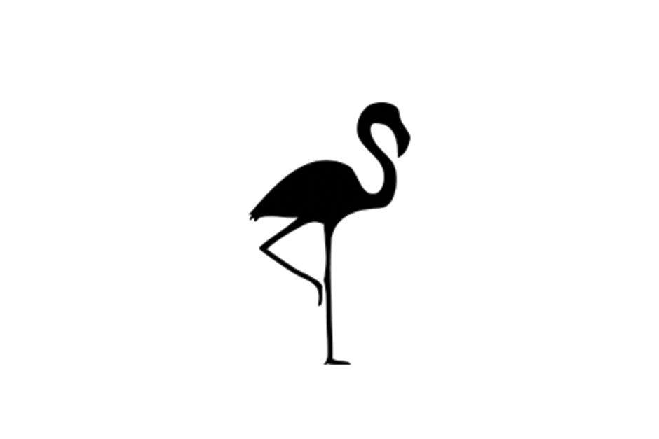 A TALL LONG LEGGED BIRD – The Story