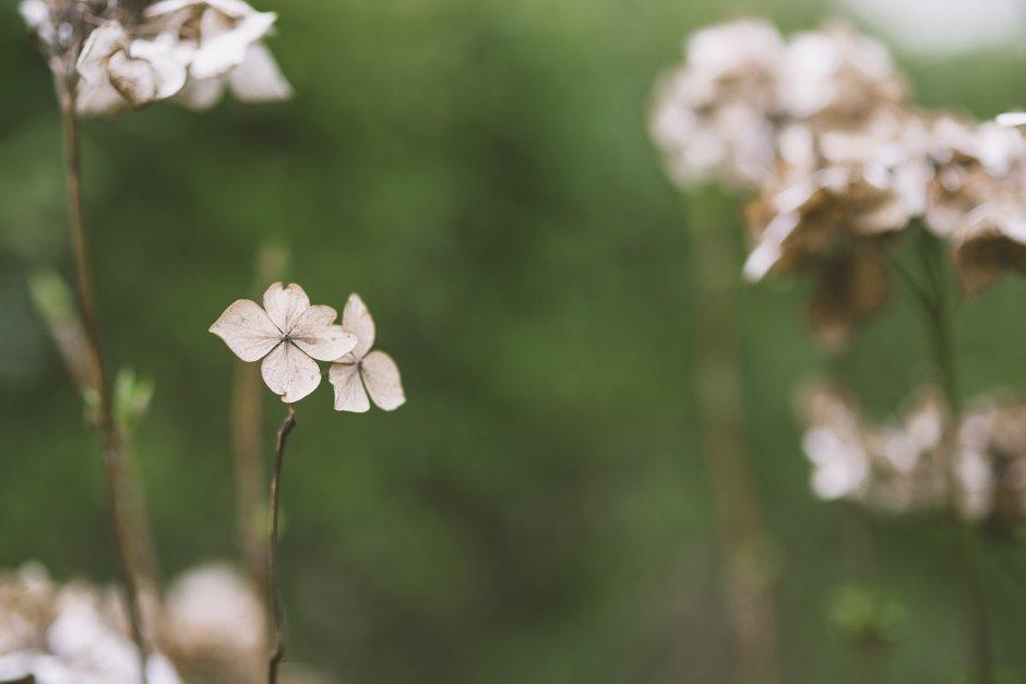 Dorset-wedding-photographer-27