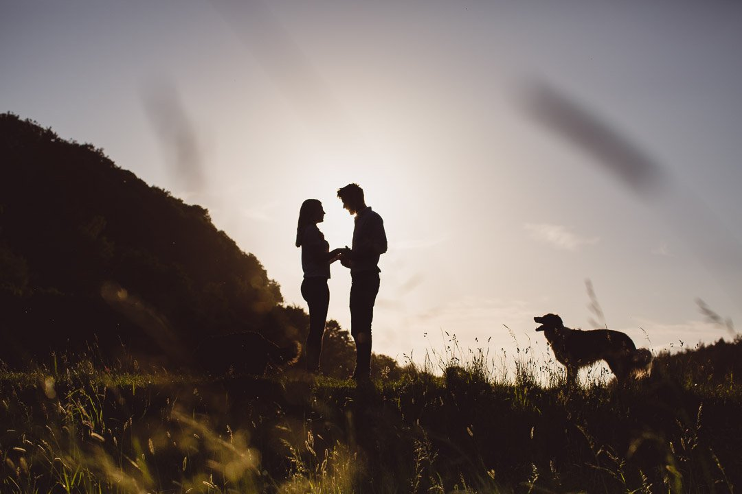 couple with their dog against the evening sky