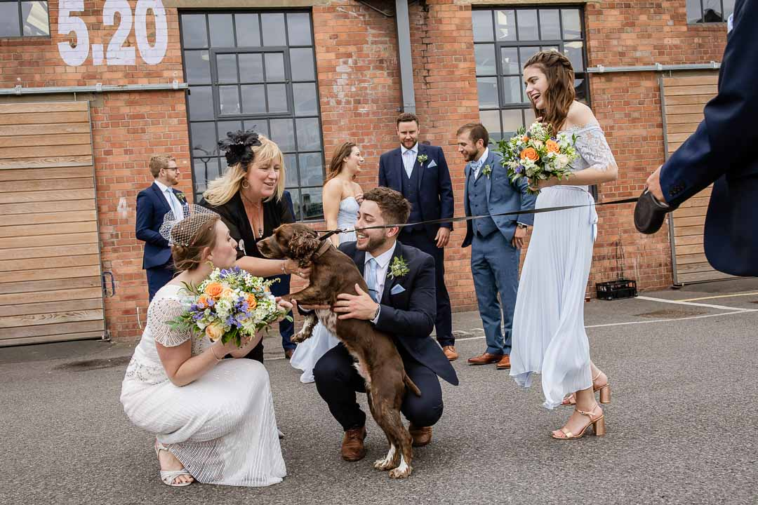 dog meets the bridal party