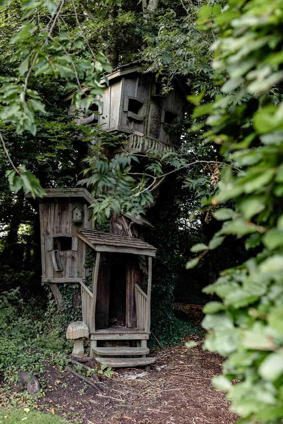 Amazing tree house at Parish's House